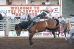 Trenten Montero of Winnemucca, Nev. competes in the bareback bronc riding competition at the Flagstaff Pro Rodeo Thursday evening.