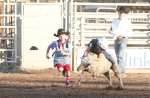 A young participant holds on tight during the mutton busting competition at the Flagstaff Pro Rodeo Thursday evening.